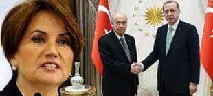 AK Partili Erdoğan MHP'li Bahçeli CHP'li İnce ve İyi Partili Akşener akraba mı?