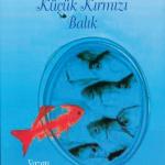İran Türklerinden kitap var