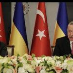 Dimitri Kurzanov: Ukrayna sorunu Türkiye işin içine çekilerek çözülemez