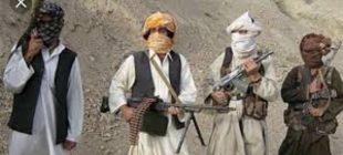 Taliban Siyasi Partiye Mi Dönüşüyor?
