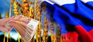 Валерий Михайлов: Россия в 2022 году может остаться без урожая